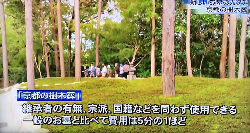 KBS京都に京都の樹木葬インタビュー