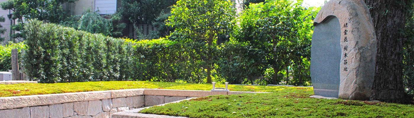 建仁寺塔頭両足院の樹木葬地風景