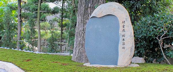 樹木葬の石碑イメージ