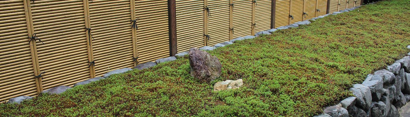 東福寺荘厳院の樹木葬地の墓苑