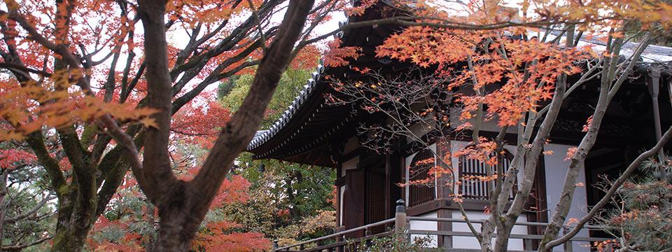 大徳寺の正受院の本堂の外観