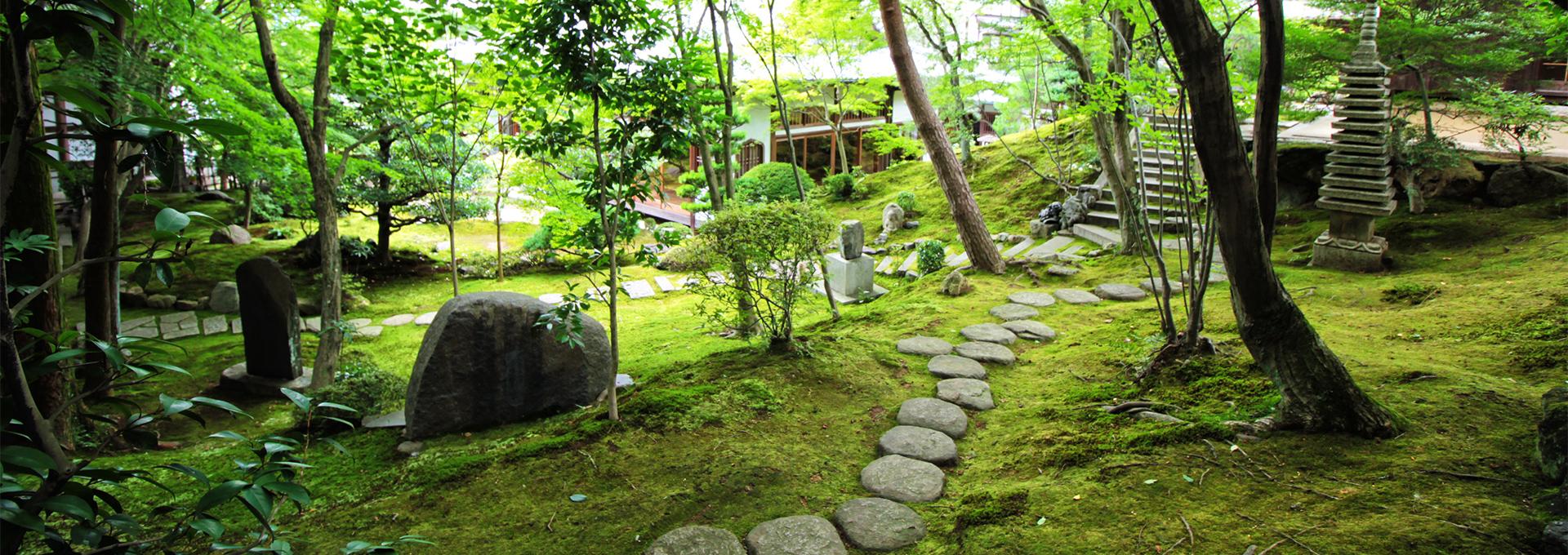 正覚庵の広い境内地風景