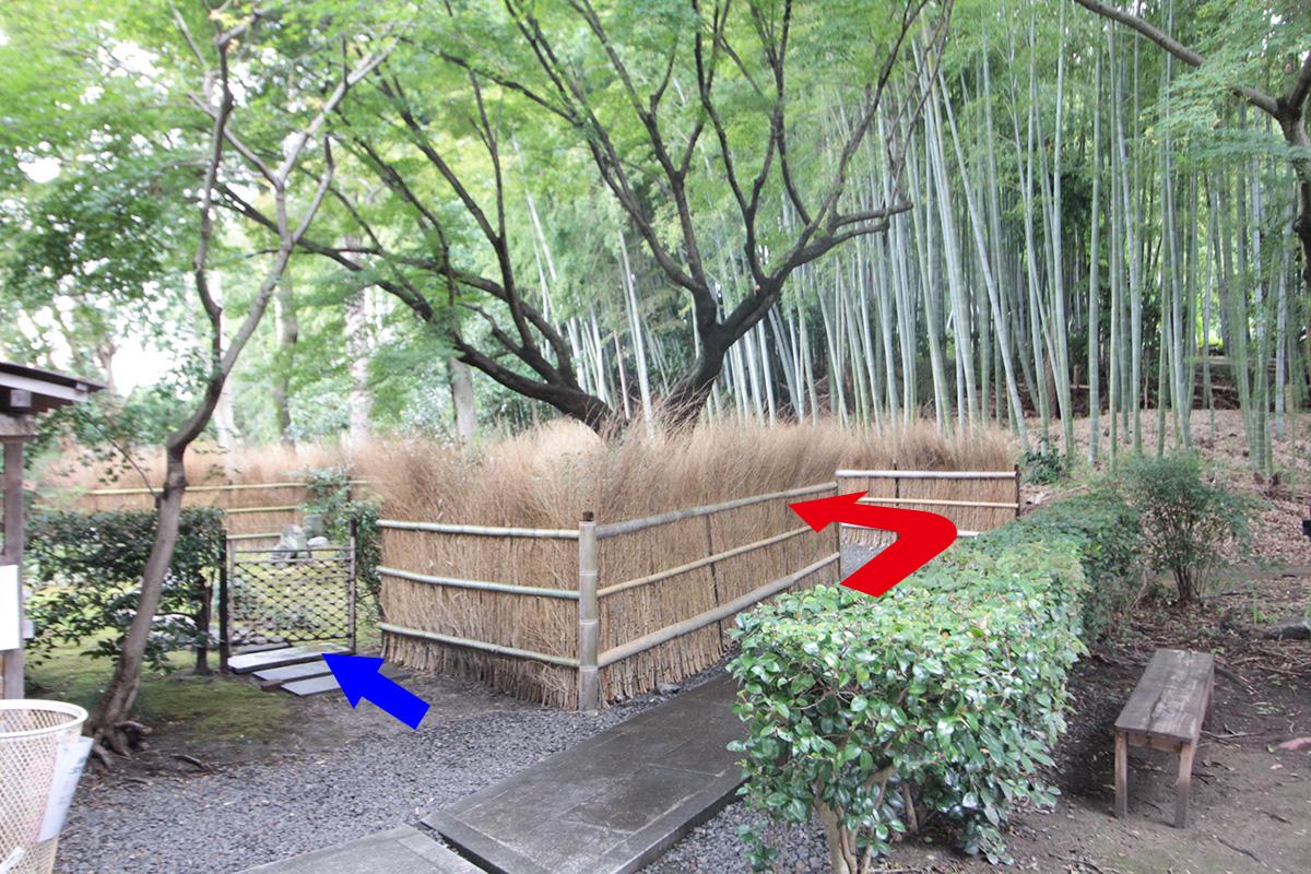 荘厳院の樹木葬までの道