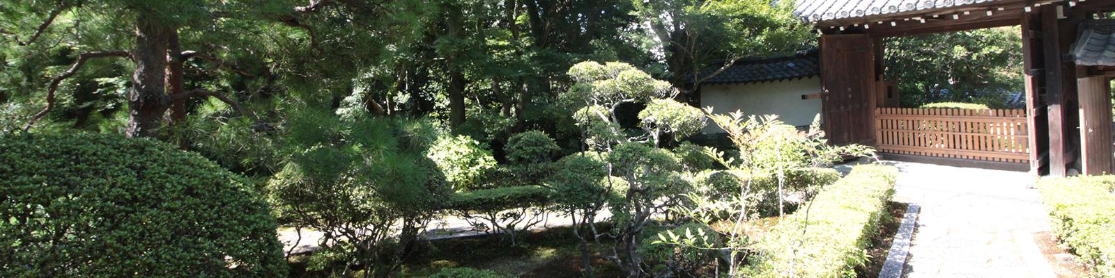 東福寺の樹木葬セミナーの即宗院の山門