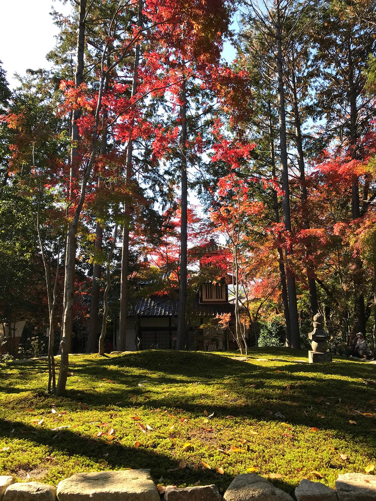 令和元年の東福寺正覚庵筆供養の時の墓苑