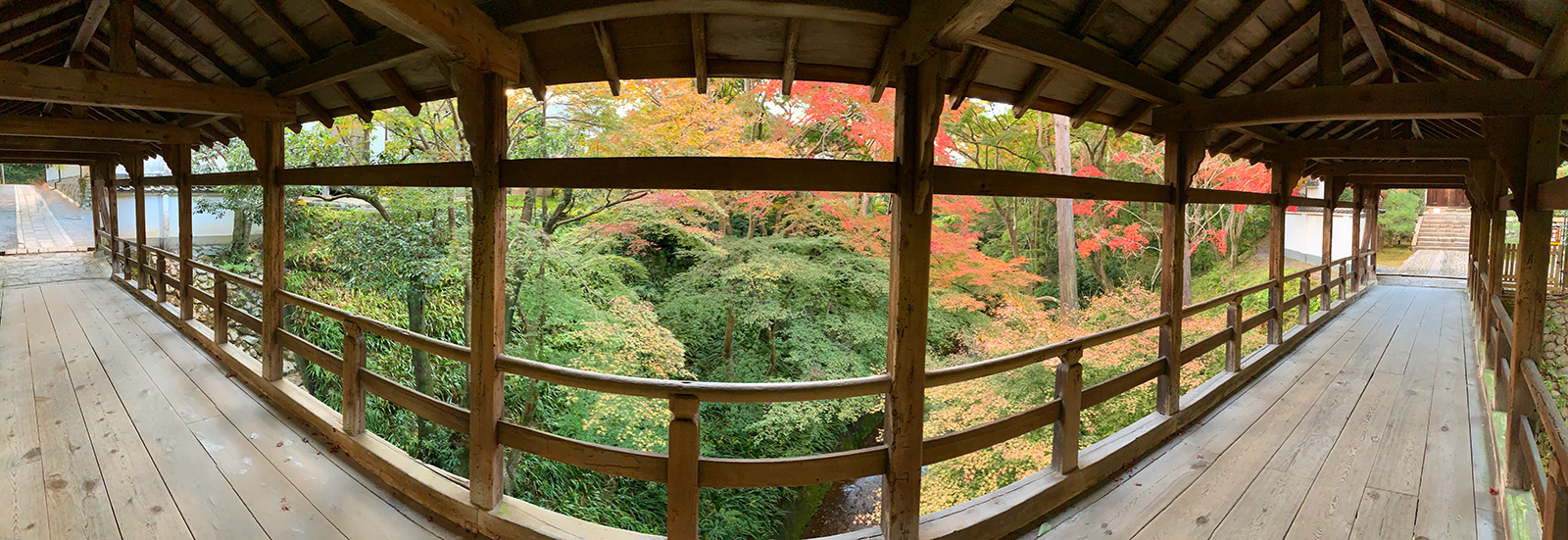 東福寺の偃月橋からの紅葉