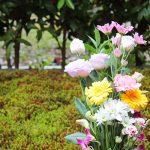 葬地への献花