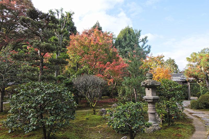 2018年11月の即宗院の庭