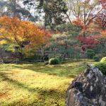 即宗院の秋の紅葉