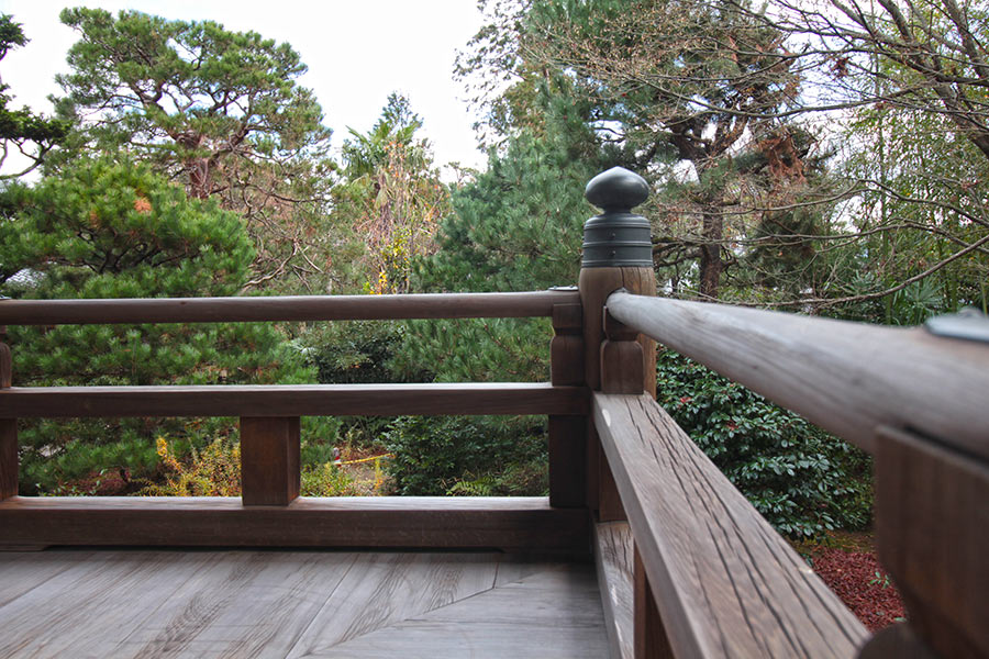12月大徳寺での終活セミナー時の本堂からの風景