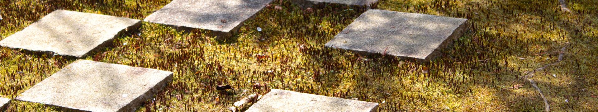 樹木葬地のある正覚庵の庭の市松模様