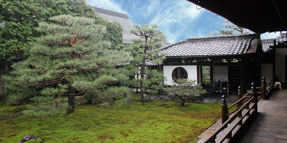 建仁寺塔頭両足院の庭の風景