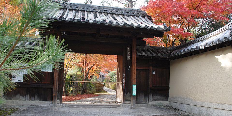大徳寺の正受院の山門