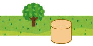 樹木葬と木の骨壷