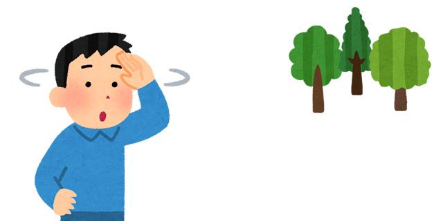 樹木葬を探す