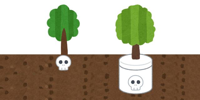 樹木葬の納骨の時、骨壷はどうするの?