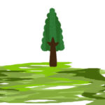 樹木葬は個別のお墓であり皆のお墓です