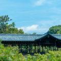 東福寺の臥雲橋からの眺め