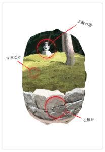 樹木葬の構想イメージ