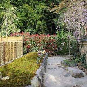 荘厳院の樹木葬の墓苑風景