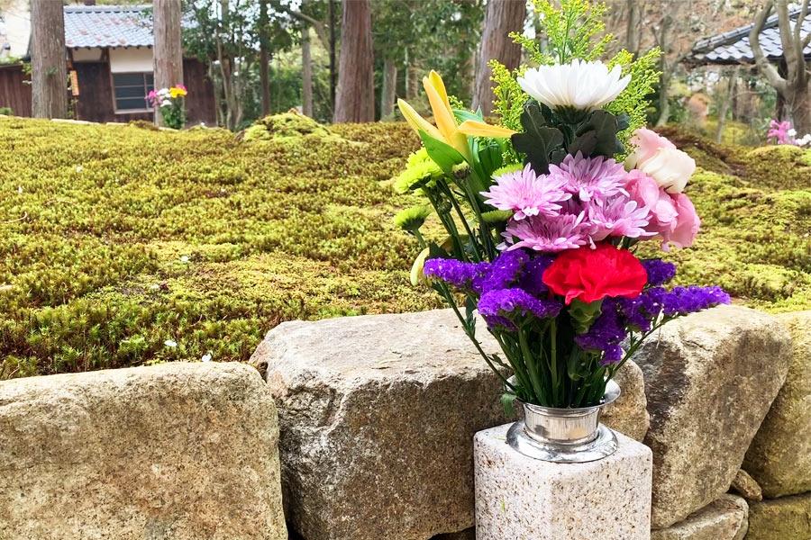 墓参の献花イメージ