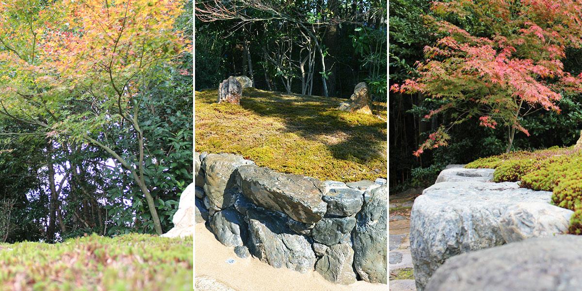 大徳寺の樹木葬のイメージ風景