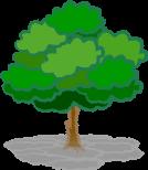 樹木葬のイメージイラスト