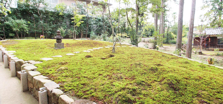 正覚庵の樹木葬第3期募集