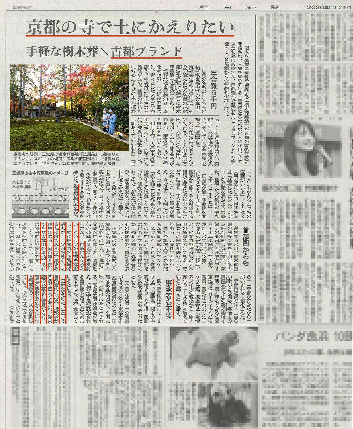 朝日新聞11月23日掲載の正覚庵樹木葬