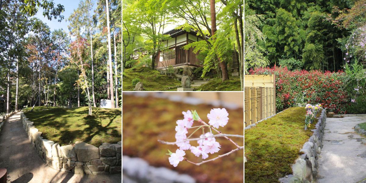 東福寺の樹木葬のイメージ風景