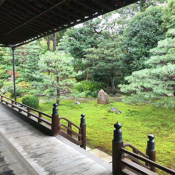 両足院の本堂前の庭