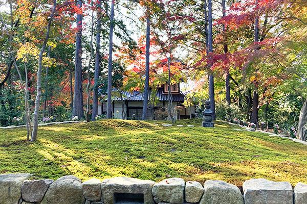 正覚庵樹木葬の正面からの風景