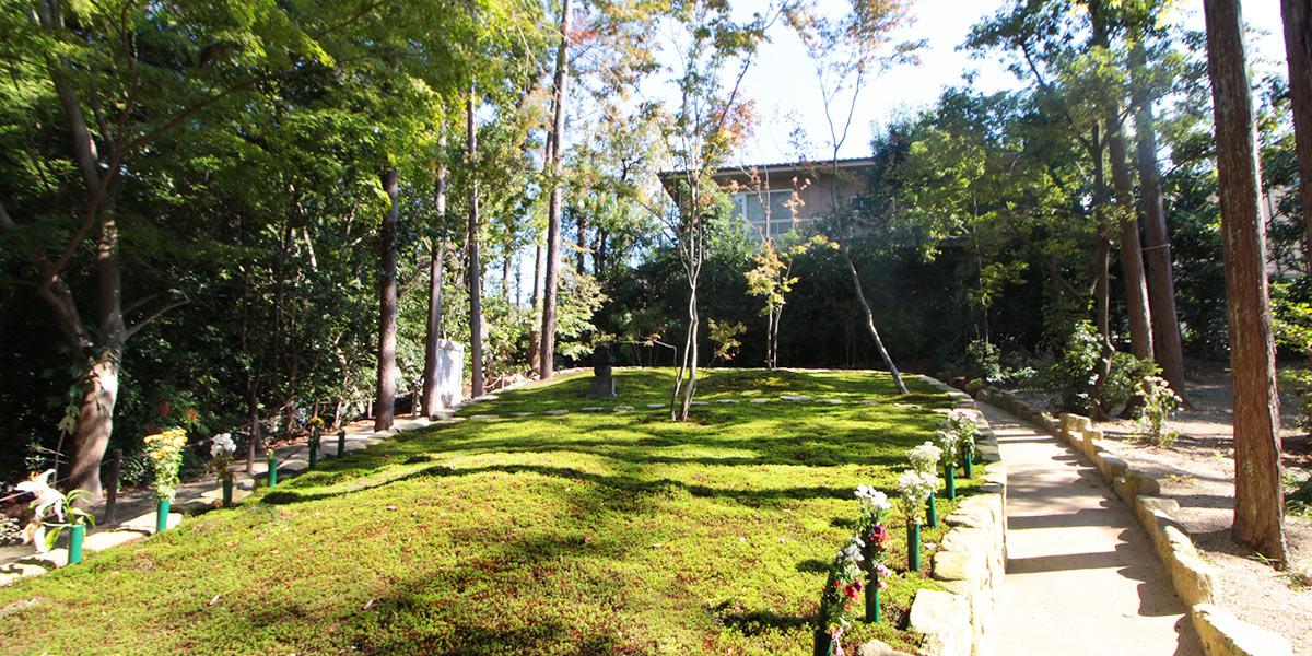 正覚庵の樹木葬の全景